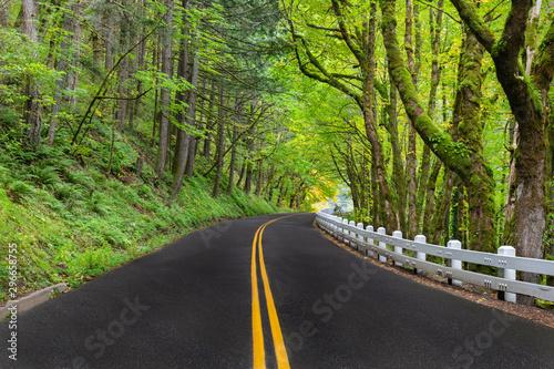 kreta-droga-wzdluz-rzeki-columbia-river-scenic-byway-z-klasycznym-bialym-ogrodzeniem-w-stanie-oregon