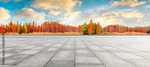 Garden Poster Trees Empty square floor and beautiful colorful forest in autumn