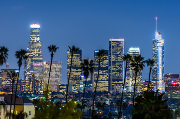Downtown Los Angeles, palm trees in foreground