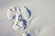 White Snow, The Figure Of An Angel.