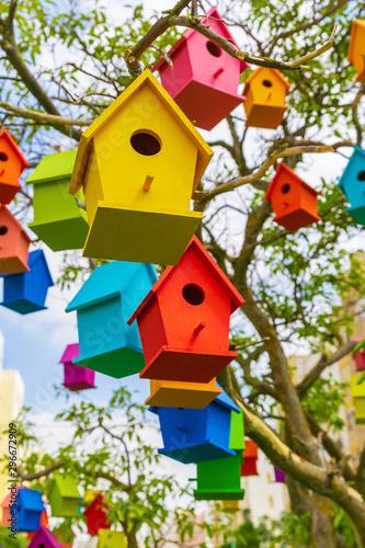 Photo  Many birdhouses on tree