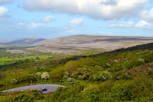 The Burren, A Region Of County...
