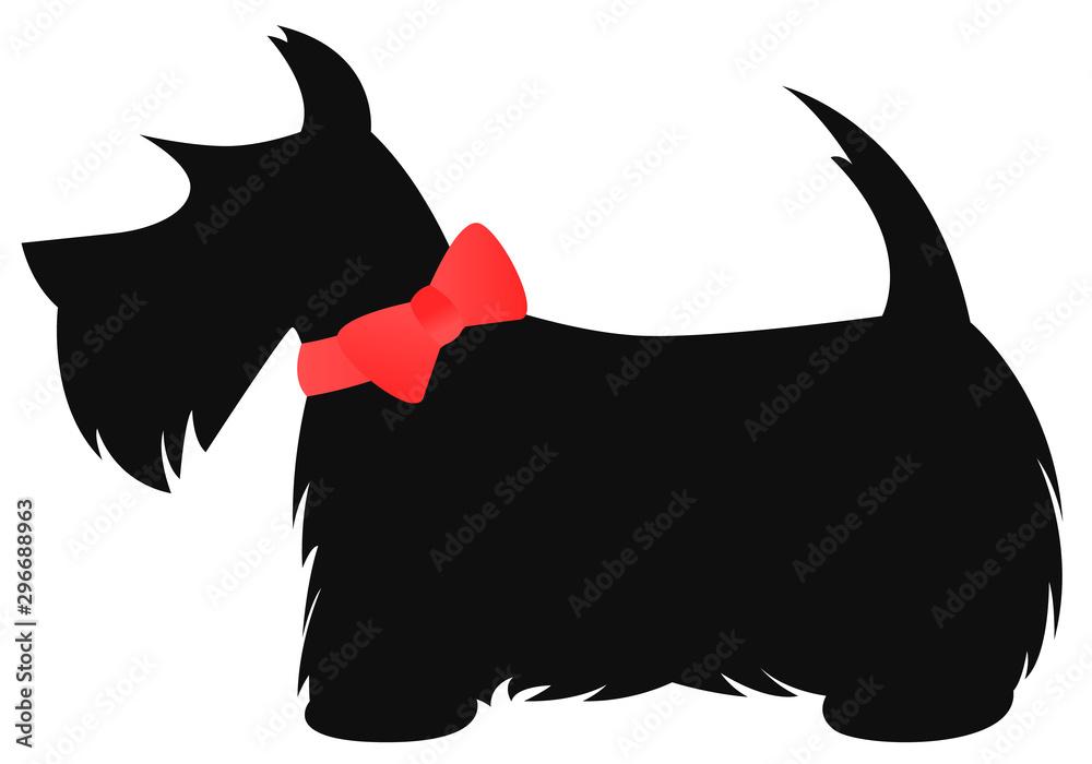 Fototapeta Scottie dog with red bow