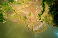 Aerial Image Of Great Rice Ter...