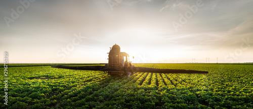 Obraz Tractor spraying soybean field in sunset - fototapety do salonu