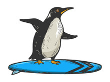 Penguin Bird Rides On Surfboard Sketch Engraving Vector Illustration. T-shirt Apparel Print Design. Scratch Board Style Imitation. Black And White Hand Drawn Image.