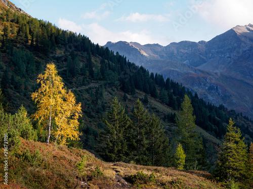 Fototapety, obrazy: Herbst in den Alpen 8