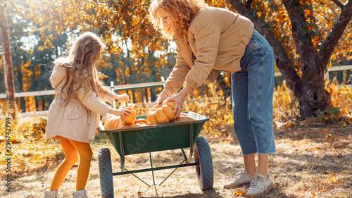 Fotografia Mother and little daughter holding pumpkin in hands, standing near wheelbarrow