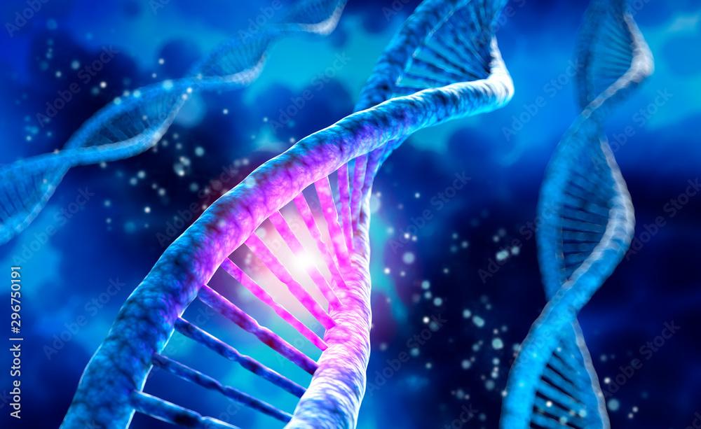 Fototapeta DNA-Helix - 3D Visualisierung