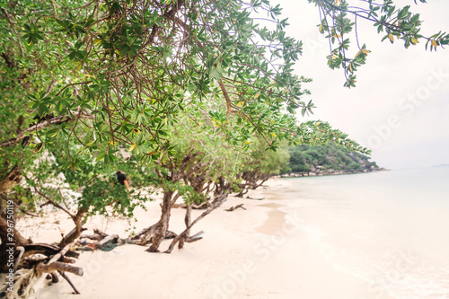 Beautiful Haad Leela beach in Koh Phangan, Thailand Canvas Print