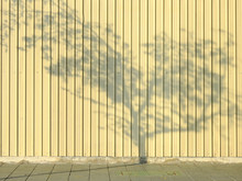 Shadow Tree On Yellow Metal Sheet Wall With Footpath In Street At Morning