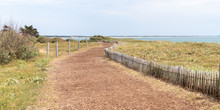 Sand Foot Path Access Beach Saint Vincent Sur Jard In Vendee France