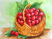 Drawing Watercolor Basket Of ...