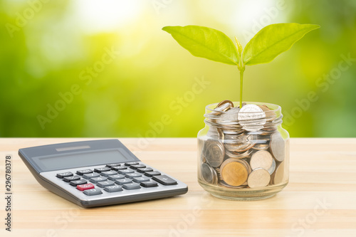 Fototapeta Coin glass jar container with tree leaves and calculator on wooden desk, on green tree background, money saving concept obraz
