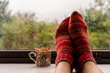 Woman feet in warm wool socks next to colourful mug with fall leaves against a rainy widow background. Autumn rain and cold weather concept.