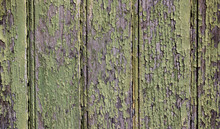 Weathered, Cracked And Peeling Dried Lime Green Paint On Old Wooden Door Background