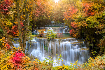 Fototapeta Las Beautiful and colorful waterfall in deep forest during idyllic autumn