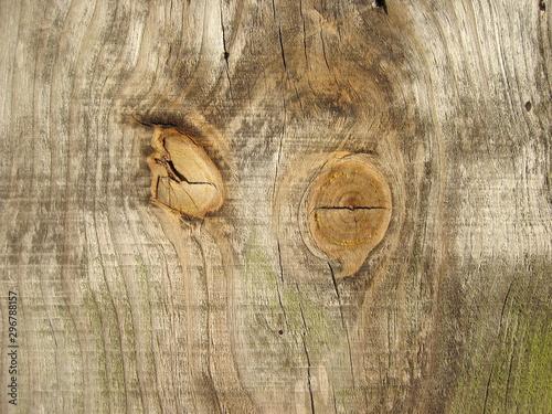 Textura de madeira natural com nós visíveis. Wallpaper Mural