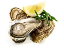 Fine De Claire Oyster On White Background