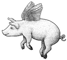Flying Pig Illustration, Drawi...