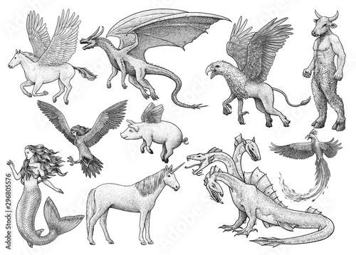 Obraz na plátně  Mythological creatures, illustration, drawing, engraving, ink, line art, vector