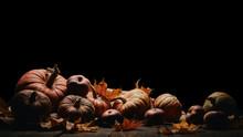 Thanksgiving Background. Autumn Harvest