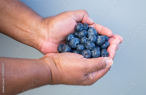 Fotografie, Obraz  ripe fresh blueberries in the cupped hands of an African American man against a