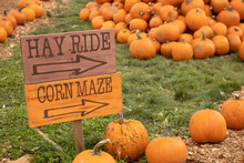 Hay Ride And Corn Maze Sign