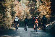 Four Multi-ethnic Friends Ride...