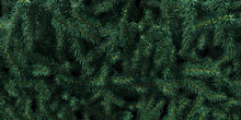 Background Of Christmas Tree B...