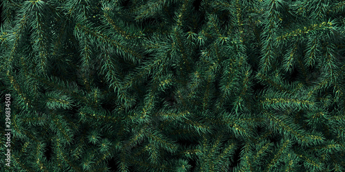 Fotografia  Background of Christmas tree branches