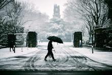 Man Walking In Snow Holding Umbrella
