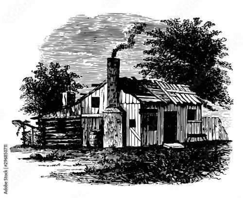Birthplace of Andrew Jackson vintage illustration. Wallpaper Mural