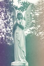 Sad Angel As A Symbol Of Etern...