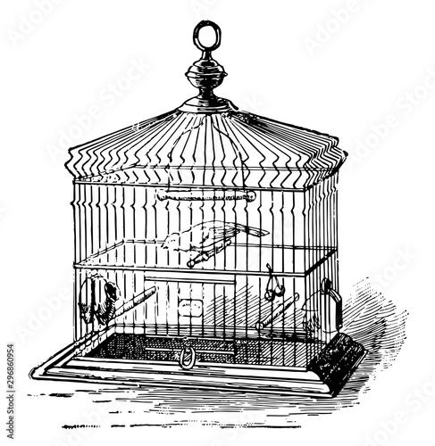 Photo Birdcage vintage illustration.