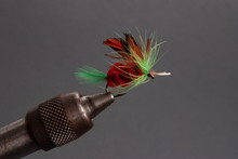 Green And Red Fly Fishing Fly