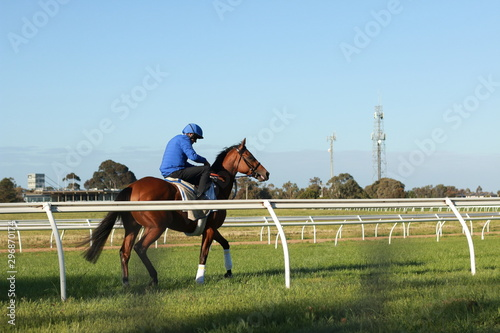 Poster Chevaux thoroughbred racehorses training on a horse track in preperation for an international horse race on an early morning, Friday 18th of October 2019, Melbourne, Victoria