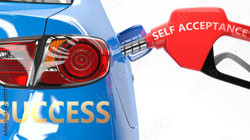 Self acceptance, success and happy life - pictured as a fuel pump and a car with Wallpaper Mural