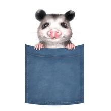 Cute Opossum On Pocket. Isolat...