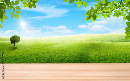 Spoed Fotobehang Weide, Moeras Wooden table and green leaves with beautiful landscape view of green grass natural meadow field and little hill with white clouds and blue sky in summer seasonal.
