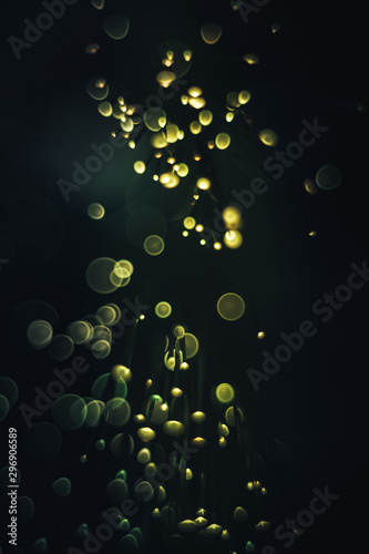 Beautiful multi colored  abstract optical light bokeh on a dark background. - 296906589
