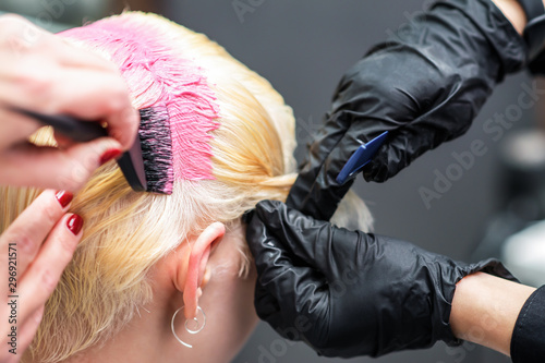 Professional hairdresser holds client's pink hair coloring close up. Hair salon. Close up pink coloring. Beauty and people concept.