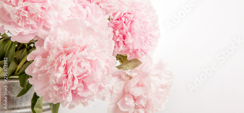 Montage in der Fensternische Hortensie Delicate beautiful pink bouquet of peonies closeup, wedding card, invitation, romantic image.