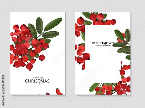 Ash berry greeting Merry Christmas cards, winter seasonal art drawing template Canvas Print