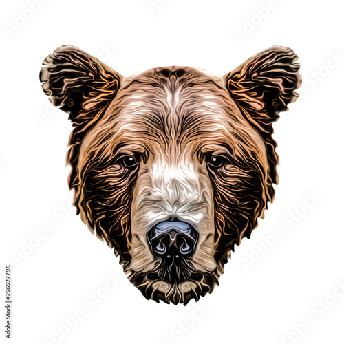 Abstract creative illustration with colorful Bear