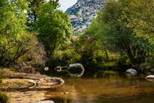 Río Manzanares. Torrentes De Agua En La Pedriza. Una Parte De La Pedriza Se Encuentra Atravesada Por El Río Manzanares. Aquí´el Agua Todavia Discurre Limpia Y Pura Entre árboles Y Vegetación