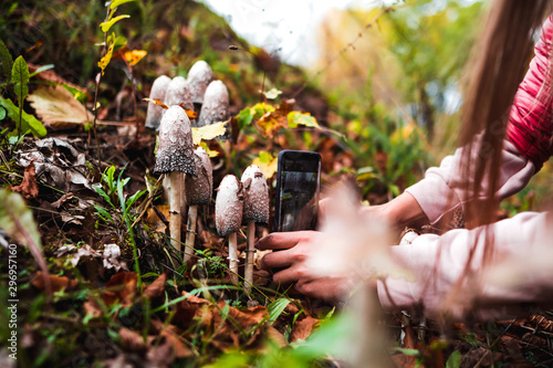 Fotomural  Girl in the autumn forest photographs poisonous mushrooms.