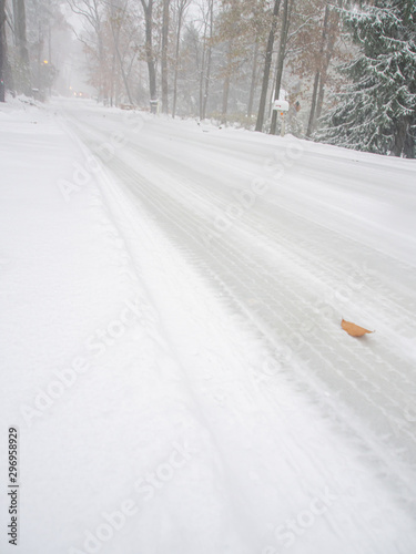 county road under the first snow of the season in November