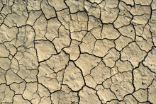Cracked Soil Texture. Hard Shadows And Sun. Dried Ground.