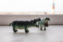 Little Hippo Figures Are Standing By The Window